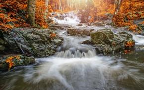 Картинка осень, лес, пейзаж, река, скалы, водопад, forest, river, landscape, beautiful, autumn, leaves, waterfall