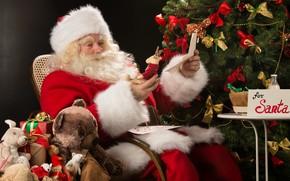 Картинка украшения, елка, Новый Год, Рождество, подарки, Санта Клаус, happy, Дед Мороз, Christmas, Xmas, decoration, Santa …