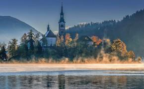 Картинка осень, пейзаж, природа, туман, озеро, утро, церковь, леса, Словения, Бледское озеро, Блед