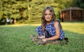 Картинка кошка, трава, девочка, боке, Ivan Niznicki