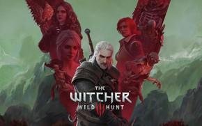 Картинка игры, ведьмак, games, rpg, геральт, трисс, geralt, юбилей, cd project red, witcher 3, witcher 3: …