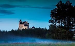 Картинка Poland, Lodz, Drzewica, Bobolice Castle