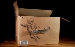 Картинка кот, коробка, игра, рисунок, лапа, когти, черный фон, поймал, ангелочек, мягкое место