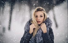 Картинка девушка, Зима, блондинка, Александр Царев