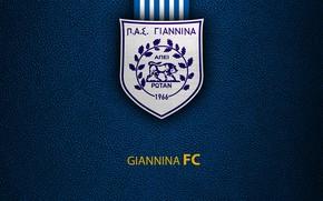 Картинка wallpaper, sport, logo, football, Greek Super League, Giannina