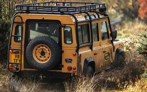 Картинка грязь, внедорожник, багажник, Land Rover, Defender, V8, запасное колесо, 5.0 л., 2021, Works V8 Trophy, …