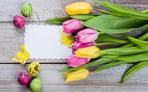 Картинка цветы, яйца, colorful, Пасха, тюльпаны, happy, pink, flowers, tulips, Easter, eggs