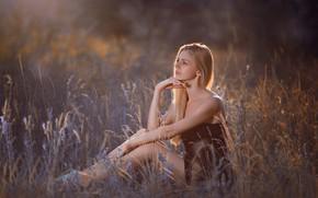 Картинка поле, лето, взгляд, девушка, поза, блондинка