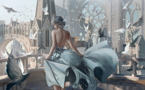 Картинка девушка, птицы, поза, ветер, спина