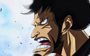 Картинка One Piece, war, anime, samurai, hero, asian, manga, oriental, asiatic, bushido, japonese, Wano