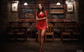 Картинка взгляд, Девушка, интерьер, платье, ножки, Oleg Klimin, Полина Гофштейн