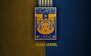 Картинка wallpaper, sport, logo, football, Tigres UANL