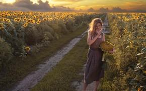 Картинка дорога, поле, девушка, подсолнухи, закат, природа, босиком, платье, босая, David Dubnitskiy