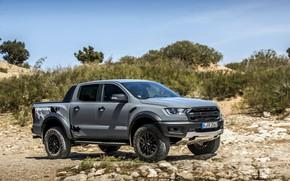 Картинка небо, камни, серый, Ford, Raptor, пикап, кустарник, Ranger, 2019