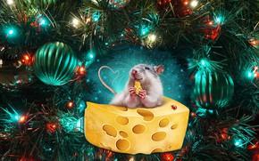 Картинка шары, елка, мышь, сыр, Новый год, New Year, 2020