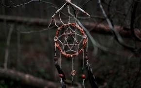 Картинка лес, ловец снов, Aleks Five