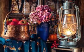 Картинка цветы, стиль, яблоки, лампа, фонарь, гортензия