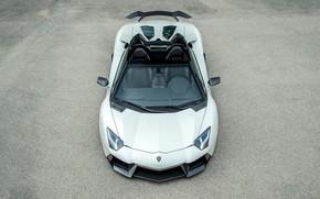 Картинка Roadster, Lamborghini, Aventador, LP 700-4, Novitec, Torado
