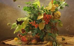 Картинка осень, ягоды, натюрморт