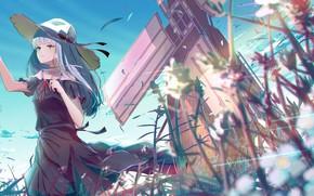 Картинка поле, девушка, птицы, шляпа