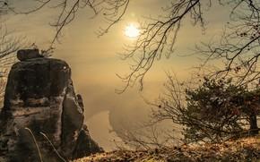 Картинка осень, трава, листья, ветки, туман, скала, река, обрыв, рассвет, берег, камень, вид, высота, утро, раннее, …