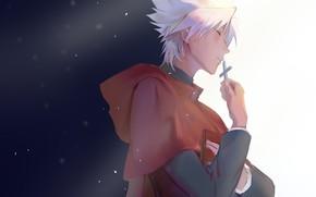 Картинка Fate - Apocrypha, Судьба Апокриф, Kotomine Shirou