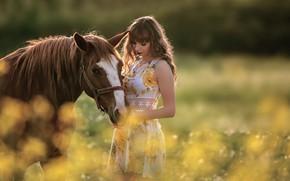 Картинка лето, девушка, природа, поза, лошадь, платье, боке