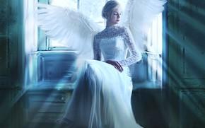 Картинка девушка, лучи, свет, поза, комната, крылья, ангел, картина, окно, арт, прическа, блондинка, белые, живопись, сидит, …