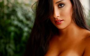Картинка model, tattoo, brunette, looking, lipstick, Brazilian woman, Talita Araújo