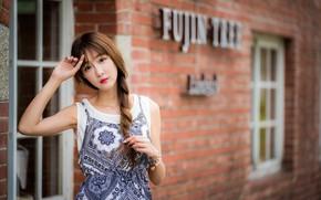 Картинка взгляд, девушка, коса, азиатка, боке