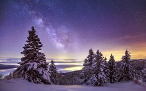 Картинка Небо, Зима, Горы, Снег, Звёзды, Млечный Путь, Еловые Деревья