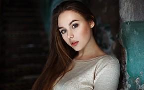 Картинка взгляд, поза, модель, портрет, макияж, прическа, шатенка, боке, Valeria, Kirill Averyanov