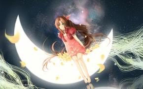 Картинка космос, месяц, лепестки, девочка, рыжая, сидит, зеленые глаза, звездное небо, босая, розовое платье