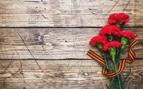 Картинка цветы, праздник, лента, 9 мая, гвоздики