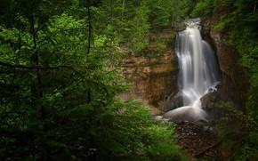 Картинка лес, пейзаж, природа, водопад, красота