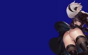 Картинка girl, sexy, ass, Anime, Nier, butt
