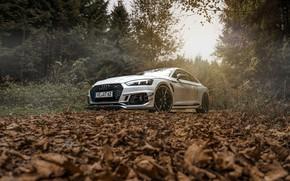 Обои Audi, rs5, ABT, rs5-r