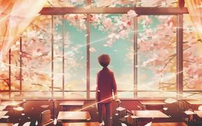 Картинка весна, мальчик, окно, класс, вишни, школьник