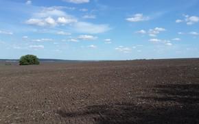 Картинка поле, весна, чернозём