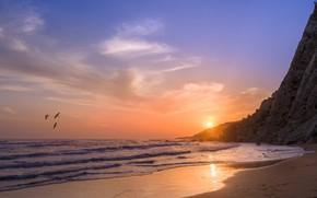 Картинка Песок, Море, Скалы, Волны, Птицы, Берег, Чайки, Светило, Линия Прибоя