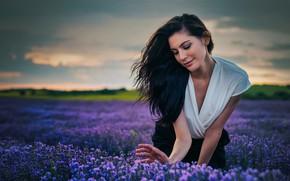 Картинка поле, девушка, поза, настроение, волосы, брюнетка, лаванда, Иван Георгиев