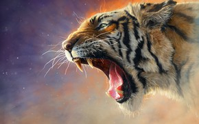 Картинка Кошка, Тигр, Кот, Пасть, Клыки, Морда, Хищник, Tiger, Predator, Cat, Рев, Животное, Animal, Mouth, Fangs, …