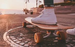 Картинка дорога, море, свобода, пальмы, тепло, кеды, скейт, скейтборд