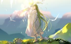 Картинка горы, простор, голуби, парень, зеленые волосы, голубое небо, закрытые глаза, rrr, белая одежда, Enkidu, Fate/Srange …
