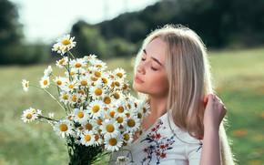 Картинка девушка, свет, цветы, природа, лицо, поза, ромашки, блондинка, боке, Илья Костин