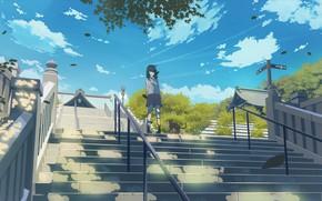 Картинка небо, кот, девушка, лестница