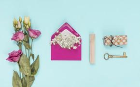Картинка цветы, фон, white, pink, flowers, конверт, эустома, eustoma