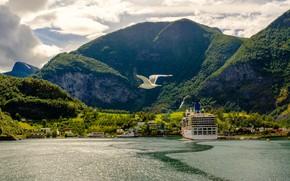 Картинка зелень, лес, небо, солнце, облака, деревья, горы, скалы, птица, берег, корабль, чайка, Норвегия, залив, домики, ...