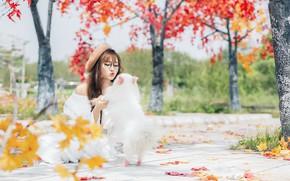 Картинка осень, девушка, собака