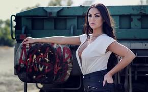 Картинка взгляд, секси, поза, волосы, юбка, брюнетка, декольте, блузка, красотка, соблазнительный, Eliana Rodriguez